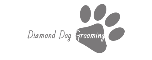 Dog Groomer Nottingham